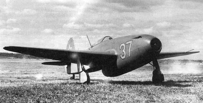 yak155