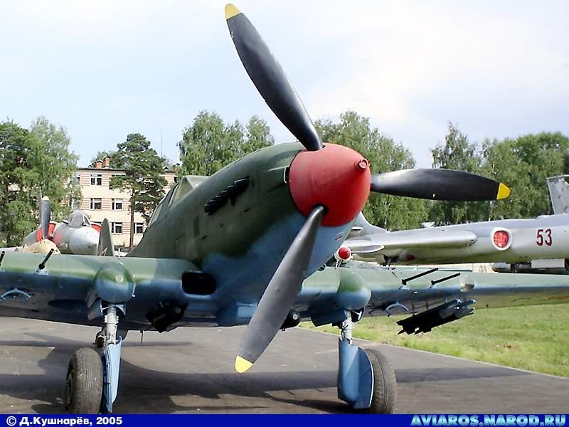 il-10_2