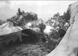 Маскировка истребителя МиГ-15. Венгрия, 1950-е гг.